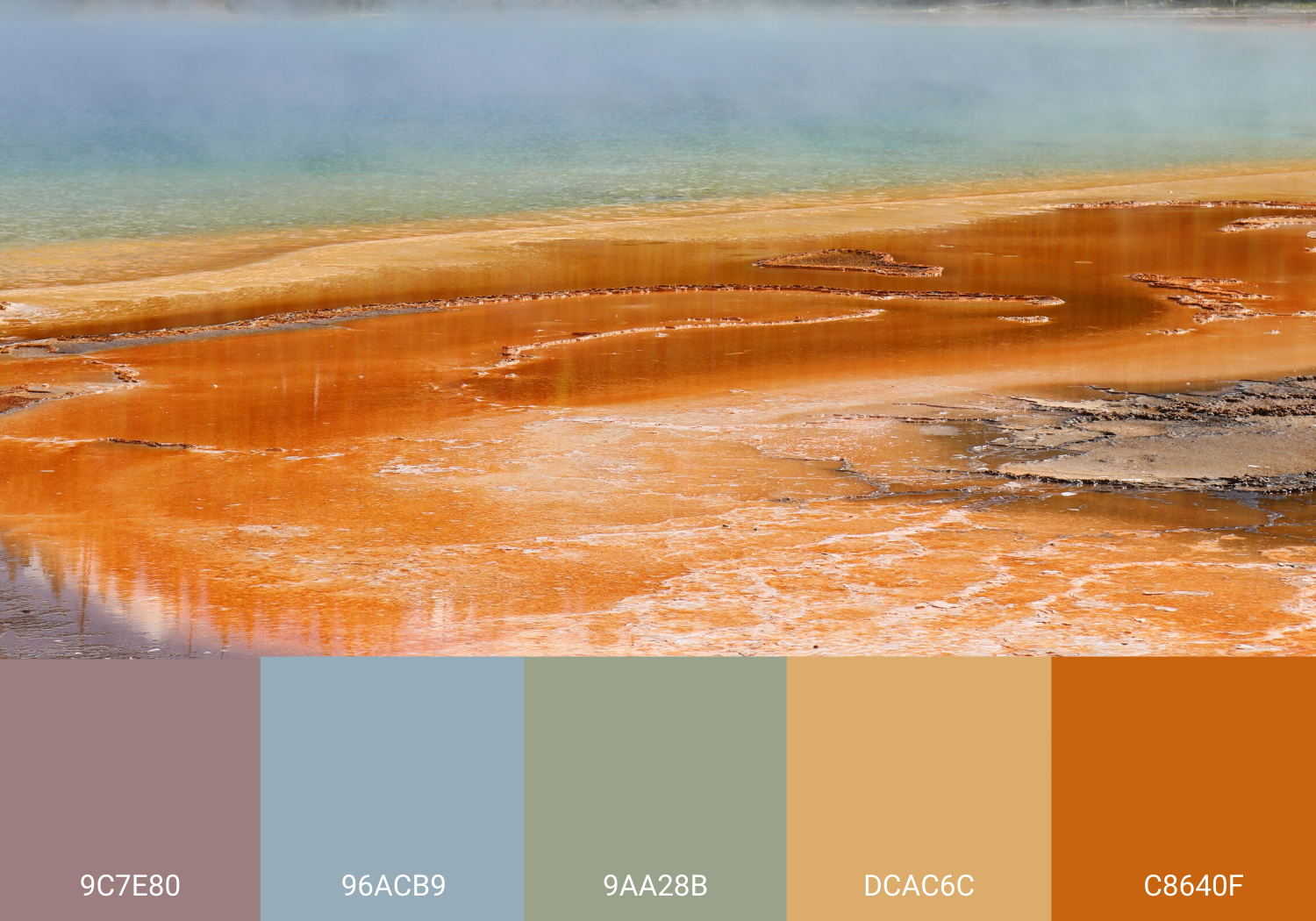 Yellowstone National Park Spring with Color Palette