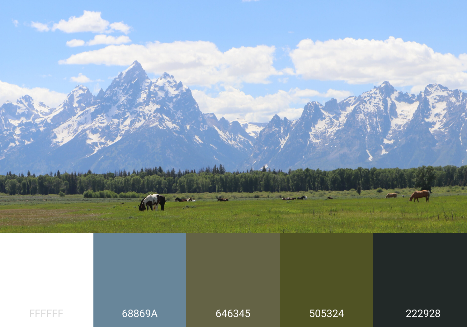 Grand Teton National Park Mountains with Color Palette