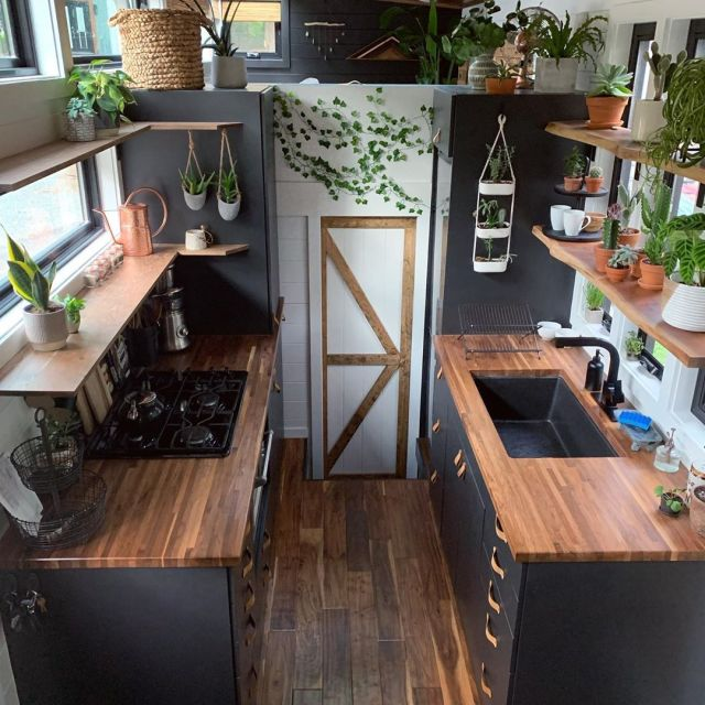 Tiny home with plants