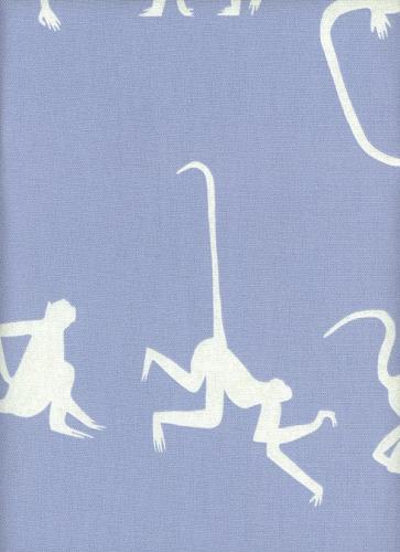 Monkey Puzzle - Bluebell