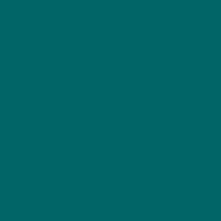 SW6481 Green Bay