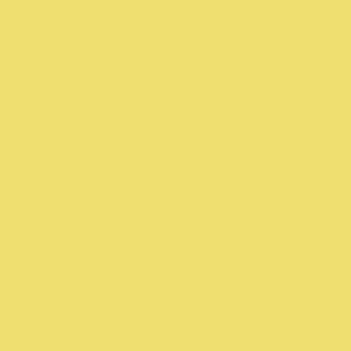 SW 6913 Funky Yellow
