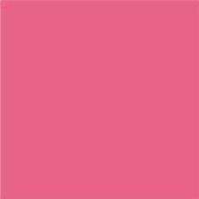 PANTONE 17-1937 Hot Pink