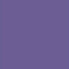 PANTONE 18-3838 Ultra Violet