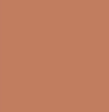 PANTONE 16-1325 Copper