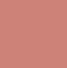 PANTONE 16-1431 TPX Canyon Clay