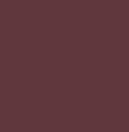 PANTONE 19-1521 TCX Red Mahogany
