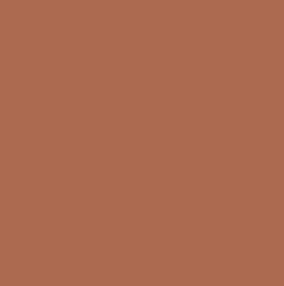 PANTONE 16-1325 TPX Copper