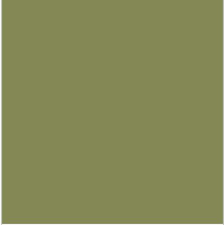 PANTONE 17-0330 Turtle Green