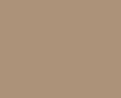 SW 2835 Craftsman Brown